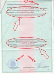 Как исправить ошибку в исполнительном листе районного суда