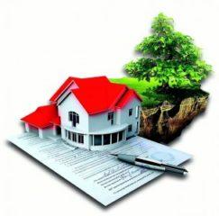 Как предоставить в аренду государственный или муниципальный земельный участок