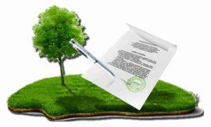 Право собственности на земельный участок: основания возникновения, признание
