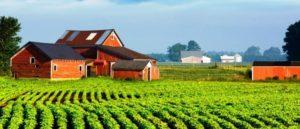 Что нужно знать о праве безвозмездного пользования земельным участком
